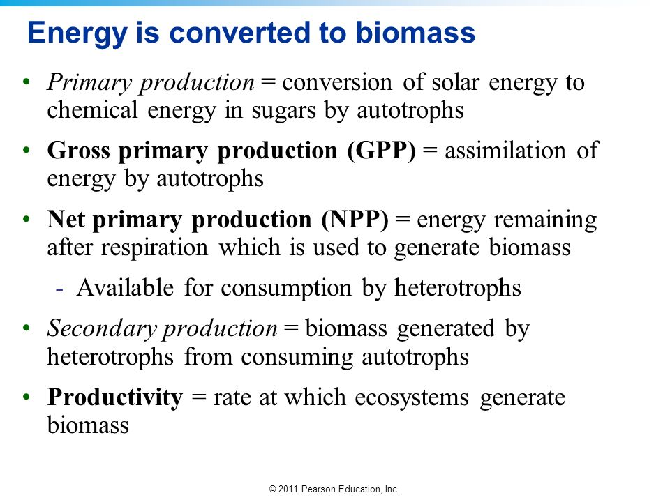 © 2011 Pearson Education, Inc. Energy is converted to biomass Primary production = conversion of solar energy to chemical energy in sugars by autotrop