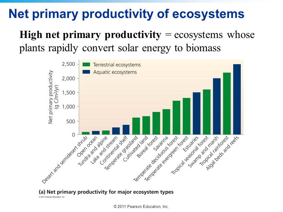 © 2011 Pearson Education, Inc. Net primary productivity of ecosystems High net primary productivity = ecosystems whose plants rapidly convert solar en