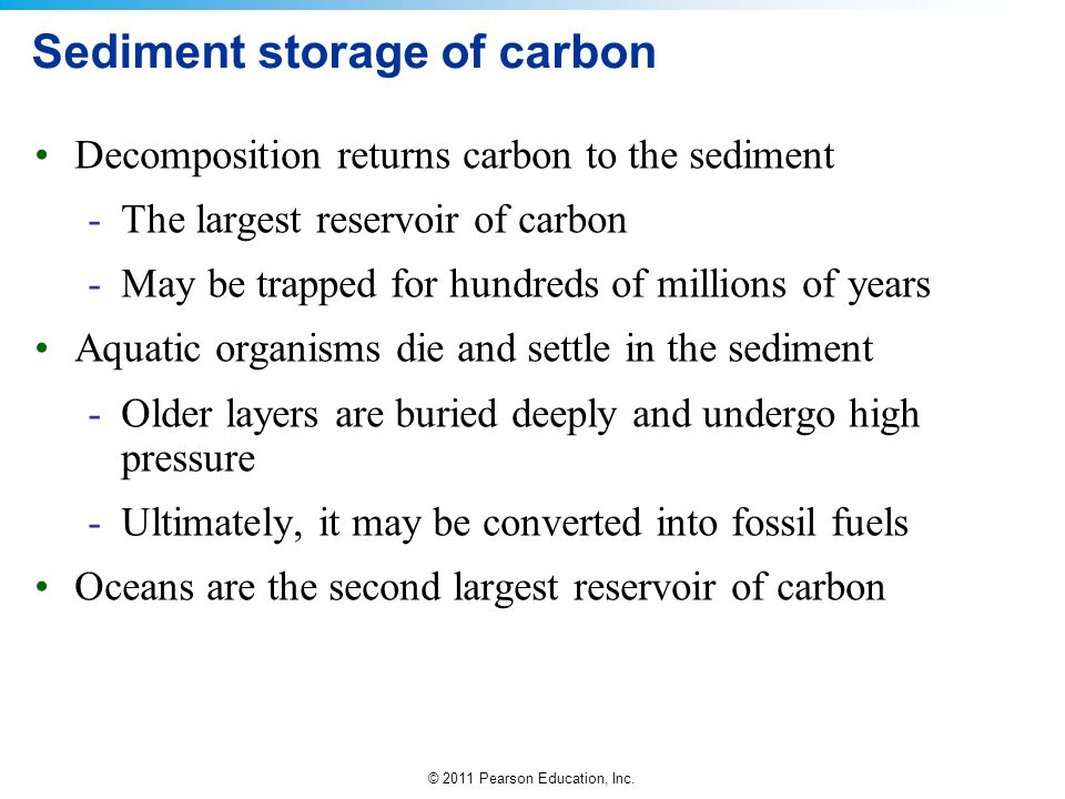 © 2011 Pearson Education, Inc. Sediment storage of carbon Decomposition returns carbon to the sediment -The largest reservoir of carbon -May be trappe