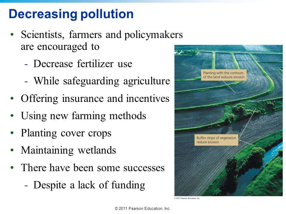 © 2011 Pearson Education, Inc. Decreasing pollution Scientists, farmers and policymakers are encouraged to -Decrease fertilizer use -While safeguardin