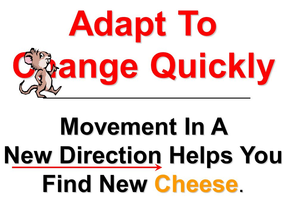 Movement In A New Direction Helps You Find New Cheese. Adapt To Change Quickly