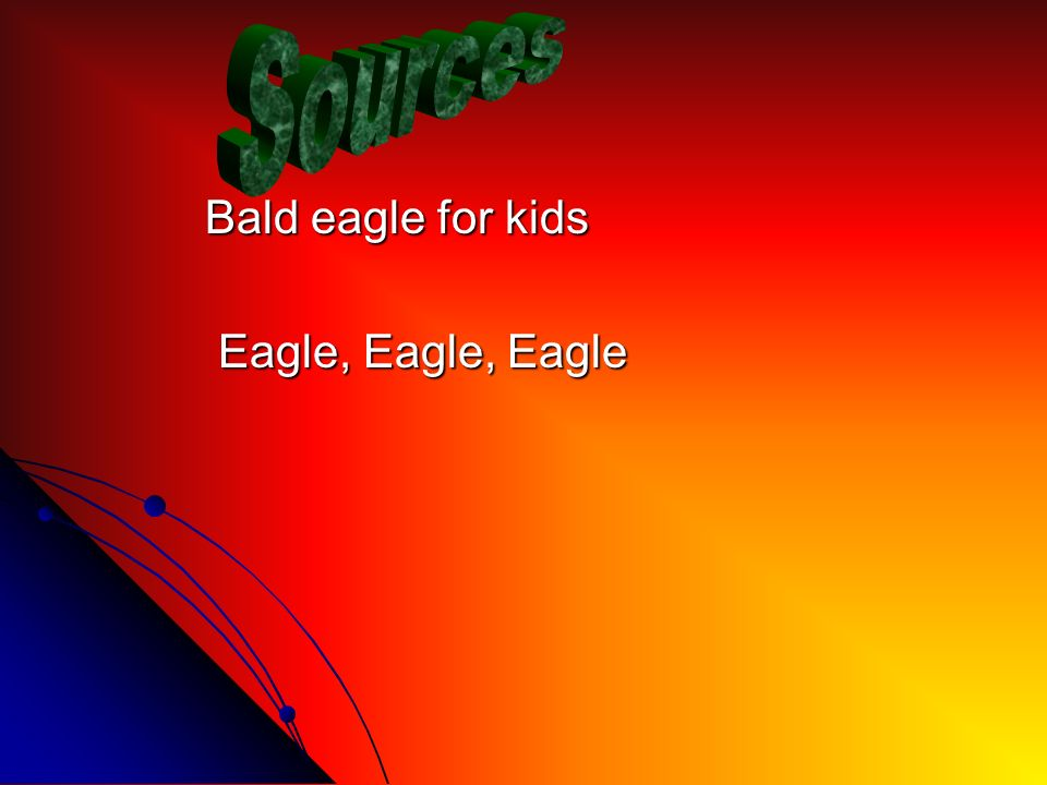 Bald eagle for kids Bald eagle for kids Eagle, Eagle, Eagle Eagle, Eagle, Eagle