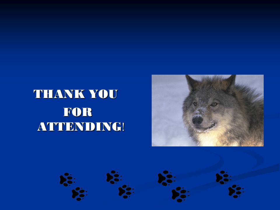 THANK YOU FOR ATTENDING ! FOR ATTENDING !