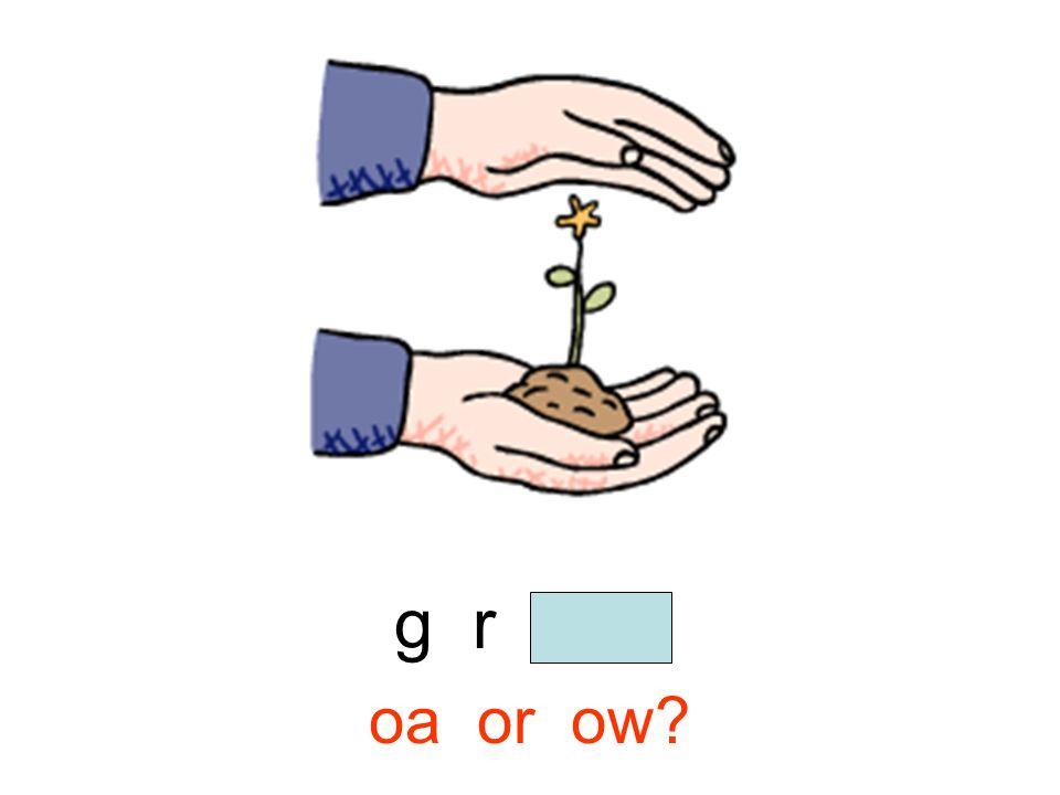 g r o w oa or ow?