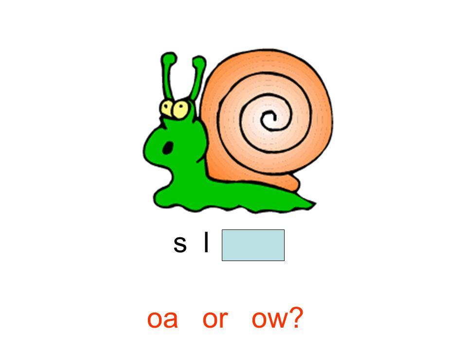 s l o w oa or ow?