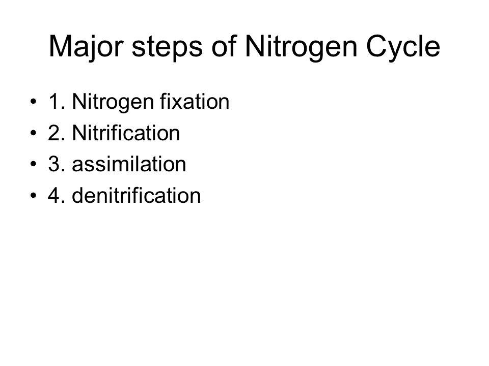 Major steps of Nitrogen Cycle 1. Nitrogen fixation 2. Nitrification 3. assimilation 4. denitrification