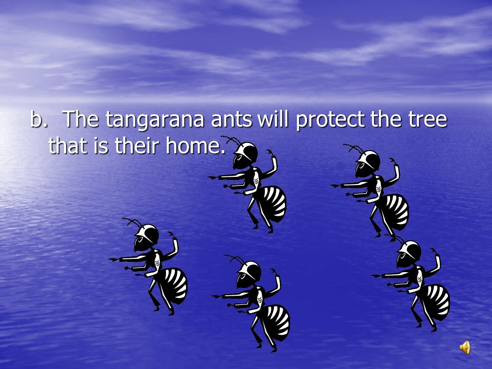 What is a MAIN idea of the second part of Nightmare Dream World? a. The tangarana tree is home to the black tangarana ants. b. The tangarana ants will