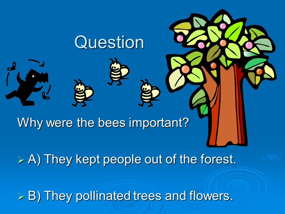 Question Why were the bees important? A) They kept people out of the forest. A) They kept people out of the forest. B) They pollinated trees and flowe
