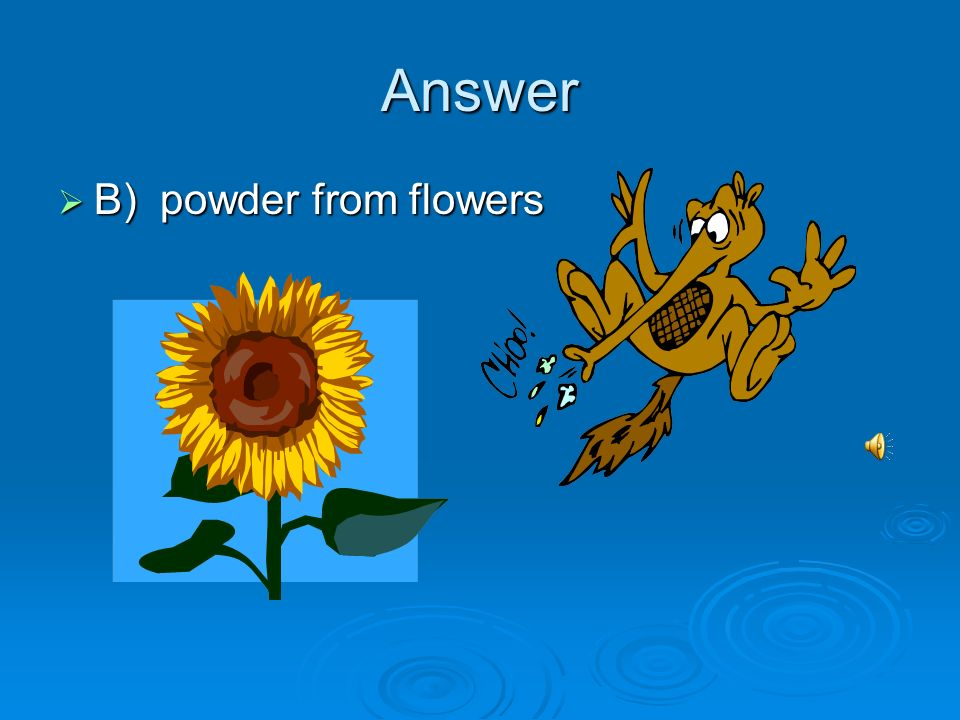 Answer B) powder from flowers B) powder from flowers