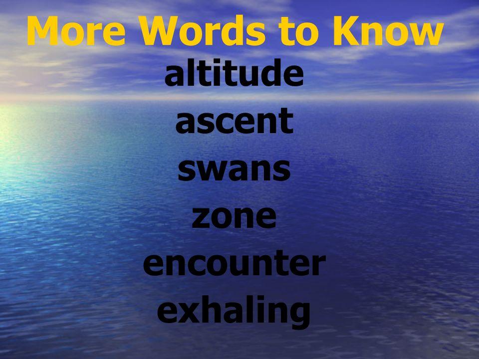 Vocabulary - Say It bluff lagoon tropical massive biologist rumbling