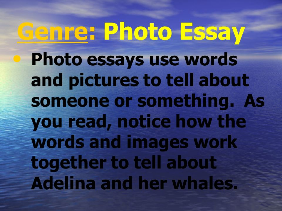 Summary Adelina Mayoral lives in La Laguna, Mexico. Each January, the gray whales arrive in the lagoon near La Laguna and stay for three months before