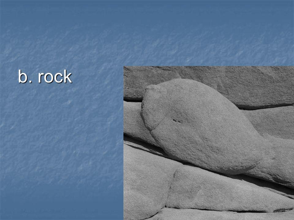 b. rock