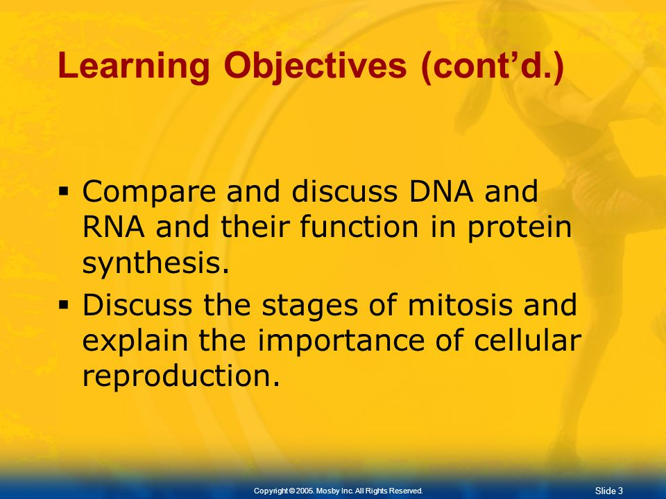 Slide 3 Copyright © 2005. Mosby Inc. All Rights Reserved. Learning Objectives (contd.) Compare and discuss DNA and RNA and their function in protein s