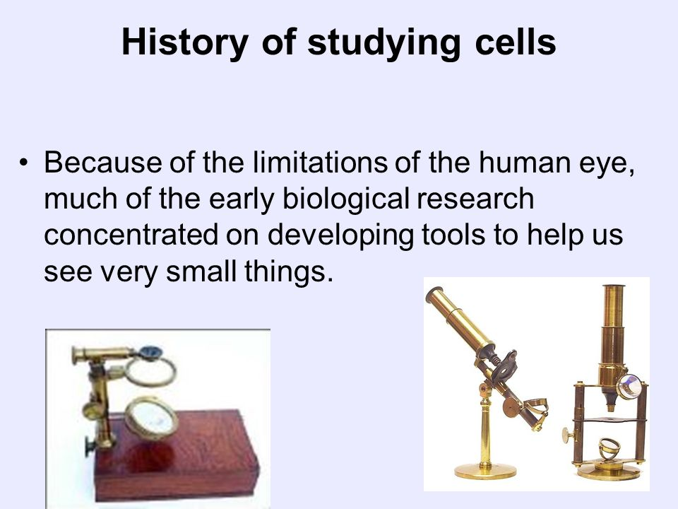 History of studying cells Because of the limitations of the human eye, much of the early biological research concentrated on developing tools to help