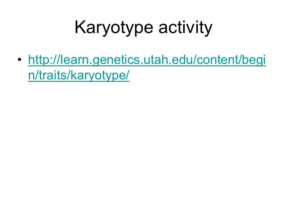 Karyotype activity http://learn.genetics.utah.edu/content/begi n/traits/karyotype/http://learn.genetics.utah.edu/content/begi n/traits/karyotype/