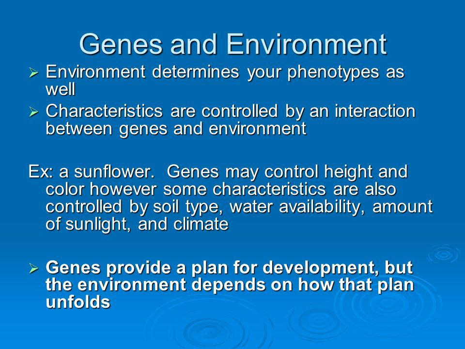 Genes and Environment Environment determines your phenotypes as well Environment determines your phenotypes as well Characteristics are controlled by