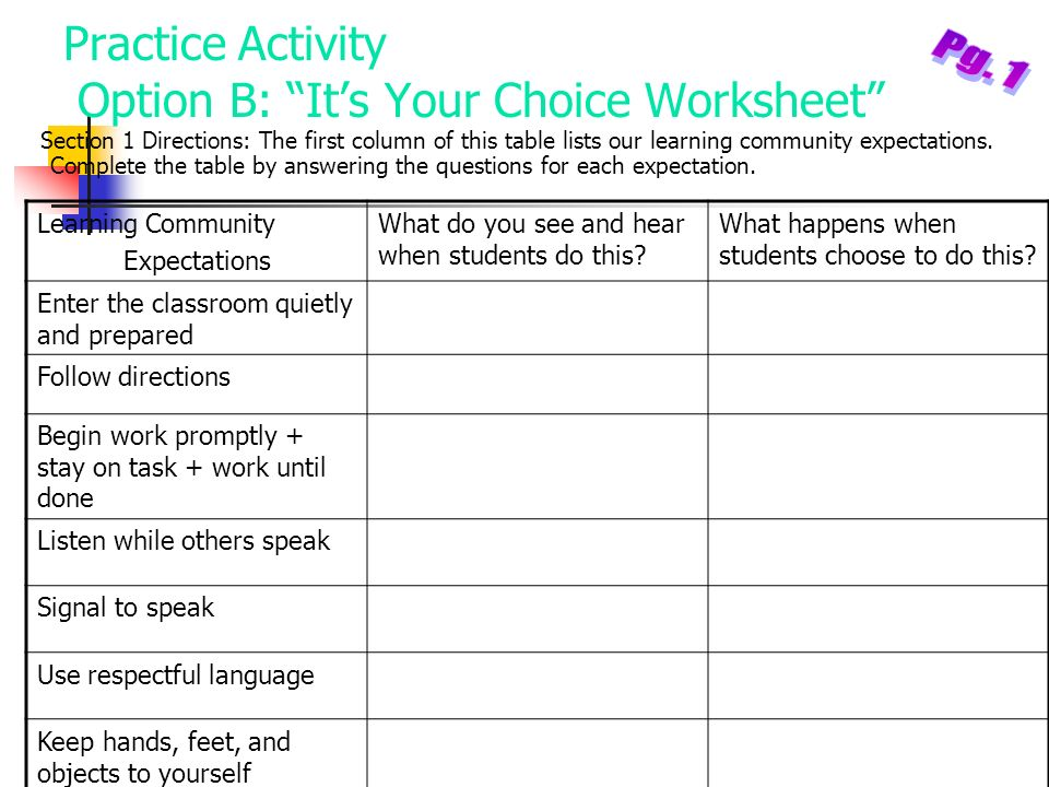 Practice Activity Option B: Its Your Choice Worksheet Section 1 Directions: The first column of this table lists our learning community expectations.