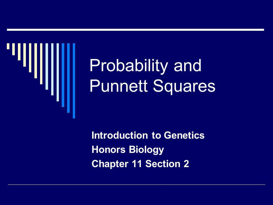 Probability and Punnett Squares Introduction to Genetics Honors Biology Chapter 11 Section 2