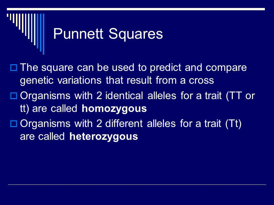 Punnett Squares The square can be used to predict and compare genetic variations that result from a cross Organisms with 2 identical alleles for a tra