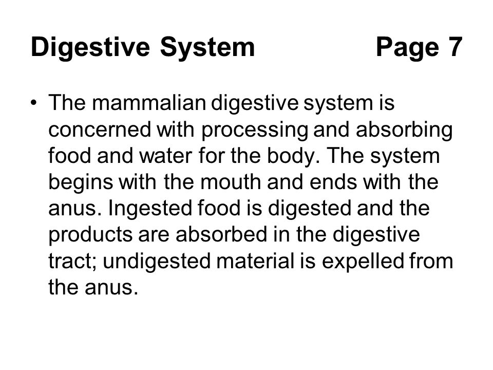 Digestive SystemPage 7 The mammalian digestive system is concerned with processing and absorbing food and water for the body. The system begins with t