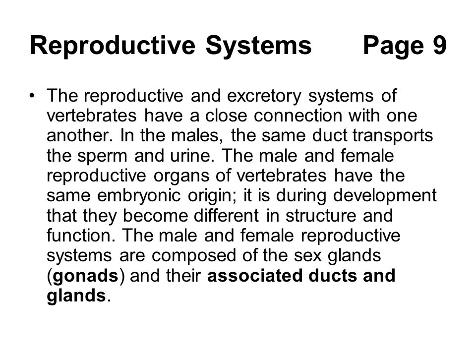 Reproductive SystemsPage 9 The reproductive and excretory systems of vertebrates have a close connection with one another. In the males, the same duct