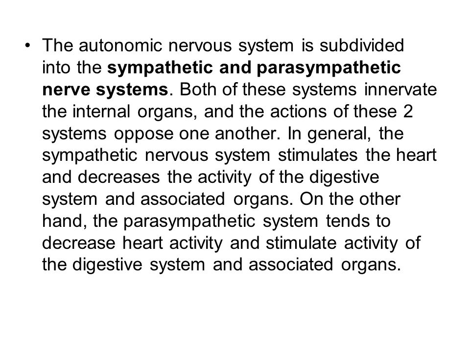 The autonomic nervous system is subdivided into the sympathetic and parasympathetic nerve systems. Both of these systems innervate the internal organs