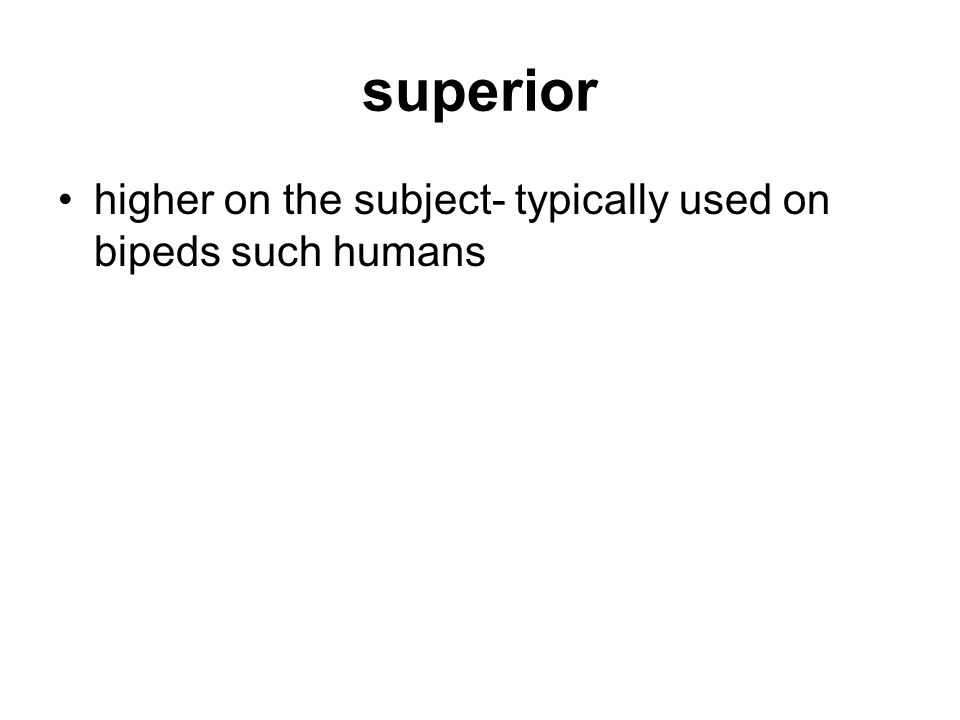 superior higher on the subject- typically used on bipeds such humans