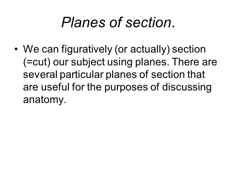 Planes of section. We can figuratively (or actually) section (=cut) our subject using planes. There are several particular planes of section that are