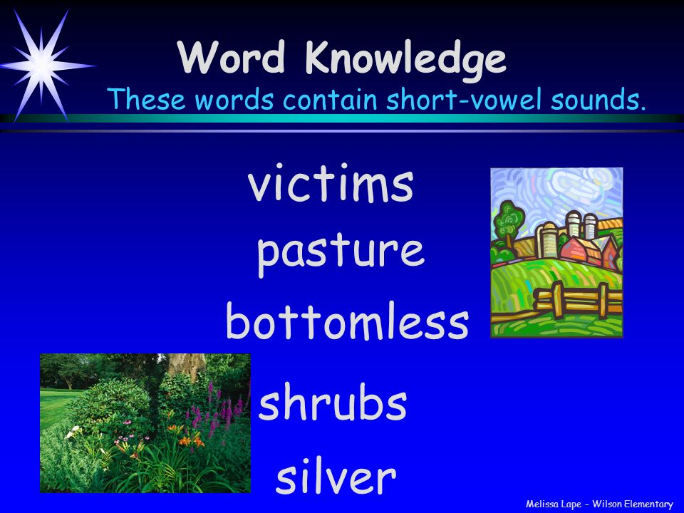 Word Knowledge These words contain short-vowel sounds. bottomless victims pasture shrubs silver Melissa Lape – Wilson Elementary