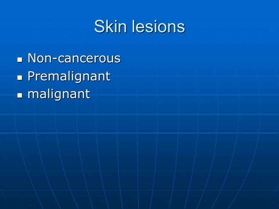 Skin lesions Non-cancerous Non-cancerous Premalignant Premalignant malignant malignant