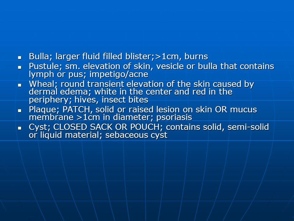 Bulla; larger fluid filled blister;>1cm, burns Bulla; larger fluid filled blister;>1cm, burns Pustule; sm. elevation of skin, vesicle or bulla that co