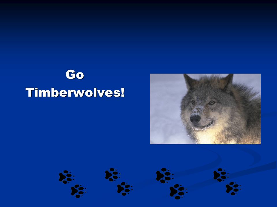 GoTimberwolves!