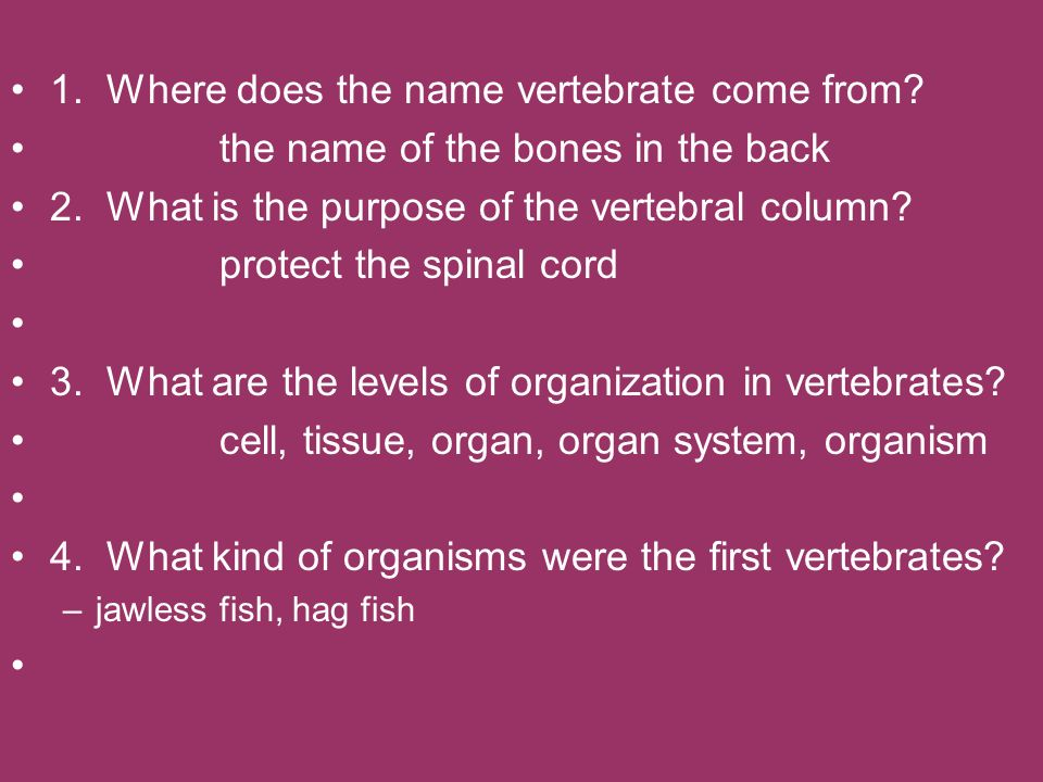 1. Where does the name vertebrate come from? the name of the bones in the back 2. What is the purpose of the vertebral column? protect the spinal cord