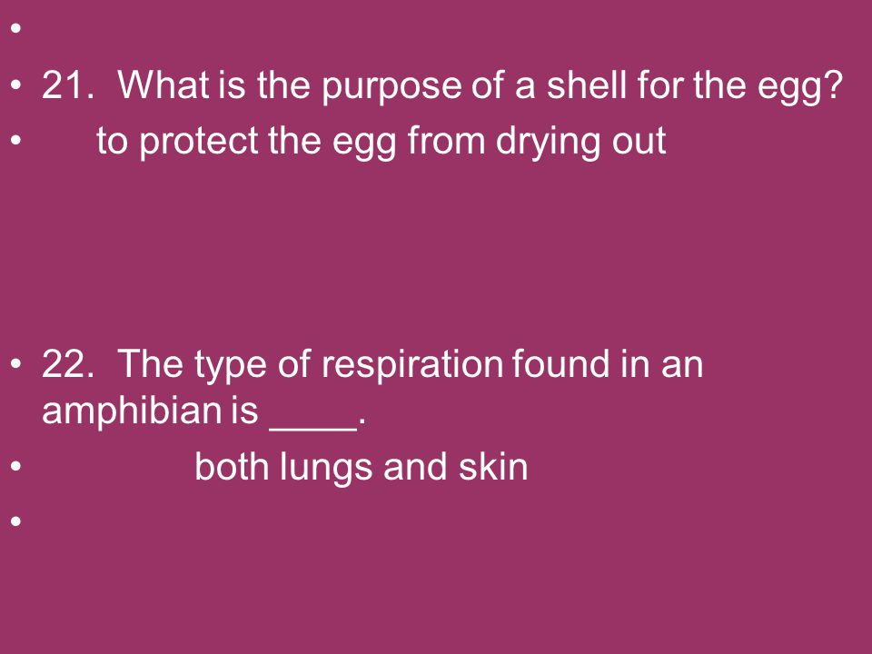 21. What is the purpose of a shell for the egg? to protect the egg from drying out 22. The type of respiration found in an amphibian is ____. both lun