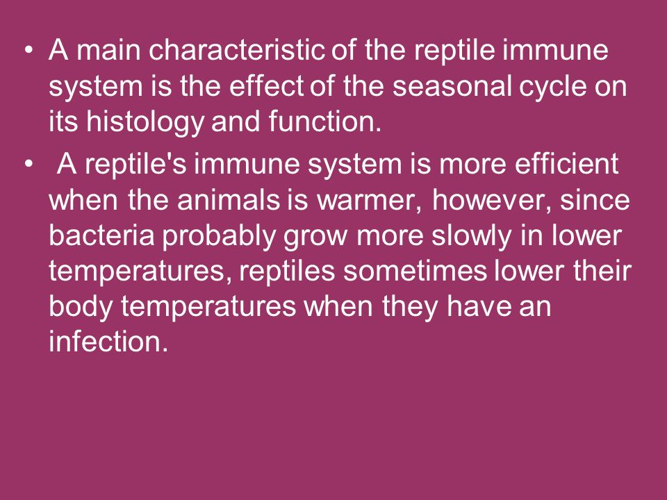 A main characteristic of the reptile immune system is the effect of the seasonal cycle on its histology and function. A reptile's immune system is mor