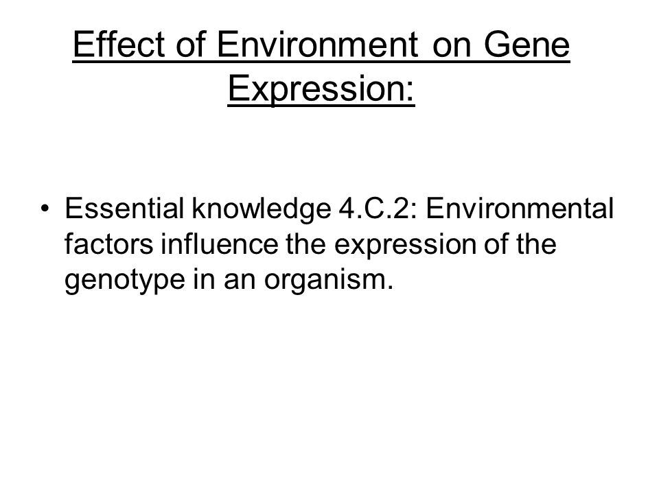 Effect of Environment on Gene Expression: Essential knowledge 4.C.2: Environmental factors influence the expression of the genotype in an organism.