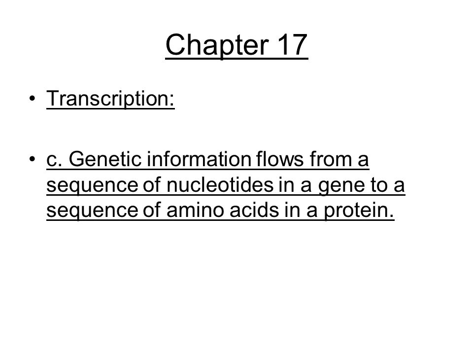 Chapter 17 Transcription: c. Genetic information flows from a sequence of nucleotides in a gene to a sequence of amino acids in a protein.