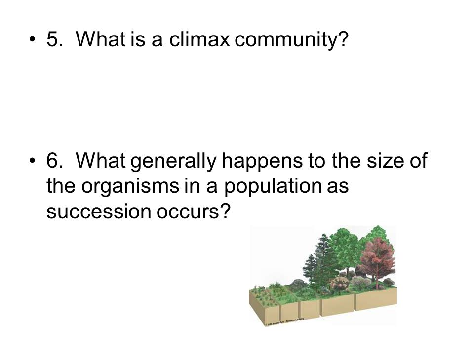 5. What is a climax community? 6. What generally happens to the size of the organisms in a population as succession occurs?