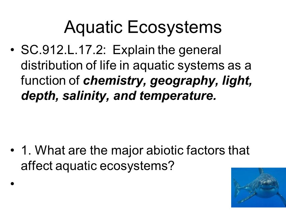 Aquatic Ecosystems SC.912.L.17.2: Explain the general distribution of life in aquatic systems as a function of chemistry, geography, light, depth, sal