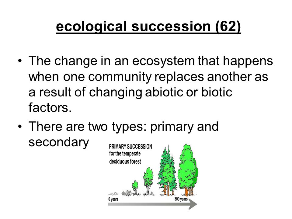 ecological succession (62) The change in an ecosystem that happens when one community replaces another as a result of changing abiotic or biotic facto