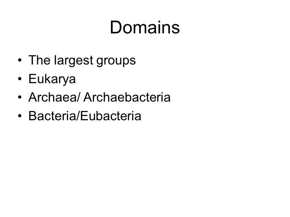 Domains The largest groups Eukarya Archaea/ Archaebacteria Bacteria/Eubacteria