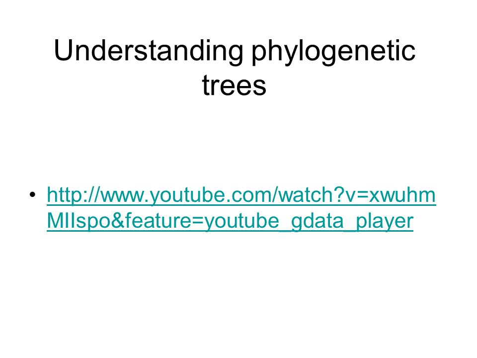 Understanding phylogenetic trees http://www.youtube.com/watch?v=xwuhm MIIspo&feature=youtube_gdata_playerhttp://www.youtube.com/watch?v=xwuhm MIIspo&f