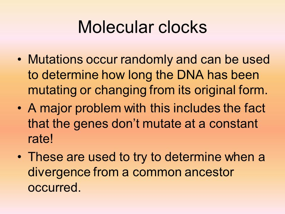 Molecular clocks Mutations occur randomly and can be used to determine how long the DNA has been mutating or changing from its original form. A major