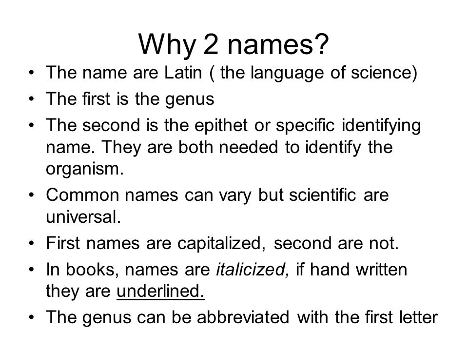 Why 2 names? The name are Latin ( the language of science) The first is the genus The second is the epithet or specific identifying name. They are bot