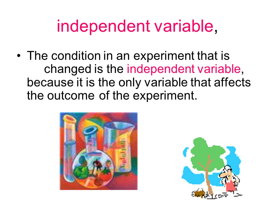independent variable, The condition in an experiment that is changed is the independent variable, because it is the only variable that affects the out