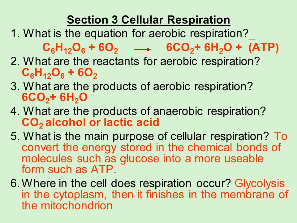 Section 3 Cellular Respiration 1. What is the equation for aerobic respiration?_ C 6 H 12 O 6 + 6O 2 6CO 2 + 6H 2 O + (ATP) 2. What are the reactants