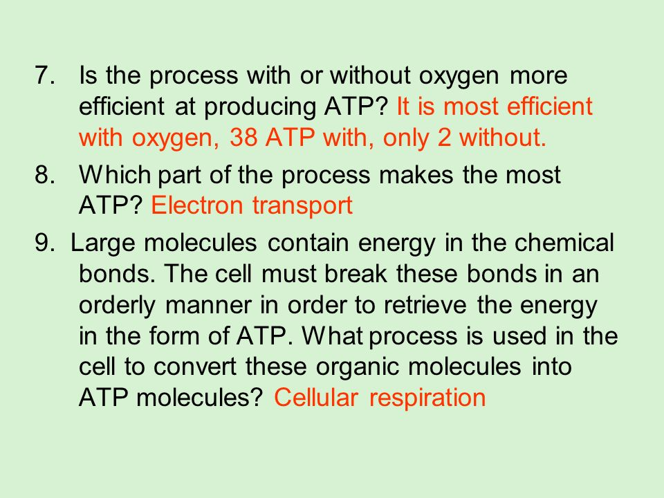 7.Is the process with or without oxygen more efficient at producing ATP? It is most efficient with oxygen, 38 ATP with, only 2 without. 8.Which part o