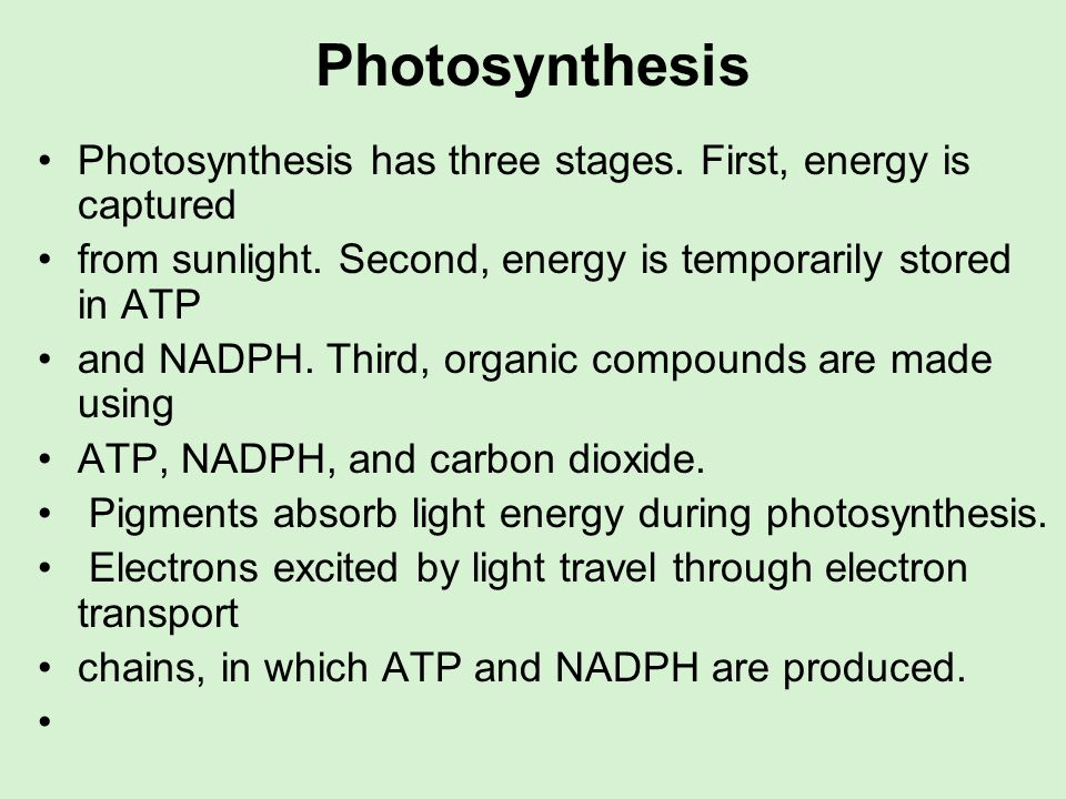 Photosynthesis Photosynthesis has three stages. First, energy is captured from sunlight. Second, energy is temporarily stored in ATP and NADPH. Third,