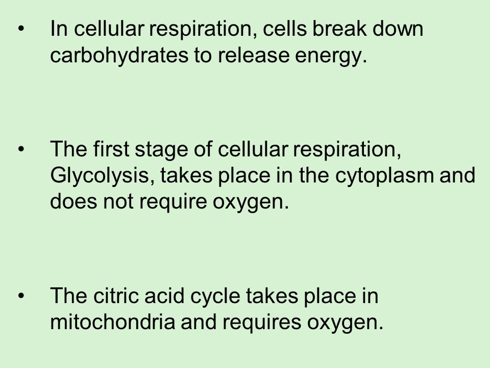 In cellular respiration, cells break down carbohydrates to release energy. The first stage of cellular respiration, Glycolysis, takes place in the cyt