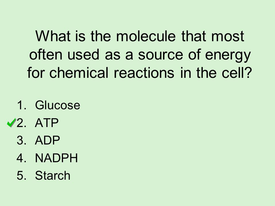 What is the molecule that most often used as a source of energy for chemical reactions in the cell? 1.Glucose 2.ATP 3.ADP 4.NADPH 5.Starch